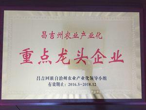 昌吉州重点龙头企业